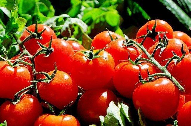 Italienische Tomatensoße Rezept