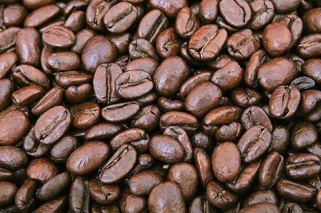 Eigene Kaffeebohnen sind unser Traum