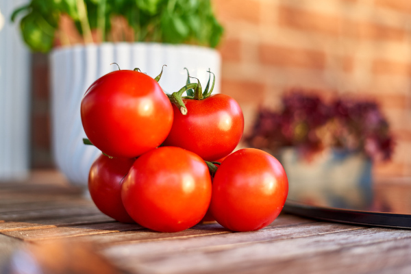 Pizzasoße Tomaten